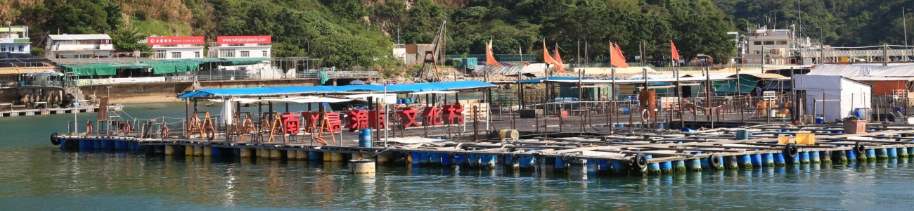 Lamma Fisherfolks Village_3